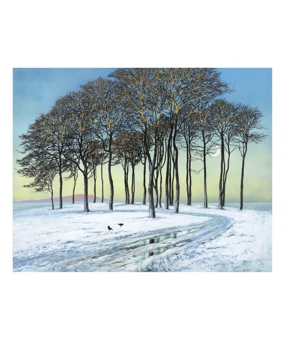 Early Morning trees - Crosby