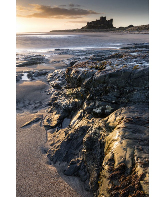 March Dawn Bamburgh